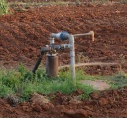 ypical bore well in a farmer plot that could be used for groundwater level monitoring
